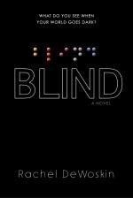 Review: <em>Blind</em> by Rachel DeWoskin